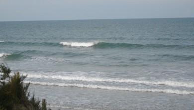 wave report FR, Grand Village (17) du 2010-08-14 08:30:00