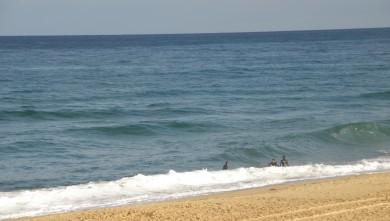 Surf report FR, Vieux Boucau (40) du 2010-08-15 09:30:00