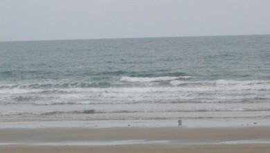 wave report FR, Grand Village (17) du 2010-08-18 05:00:00