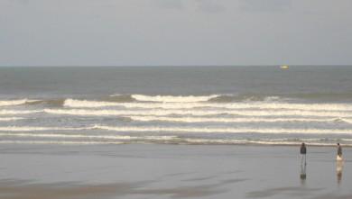 wave report FR, Grand Village (17) du 2010-08-24 09:00:00