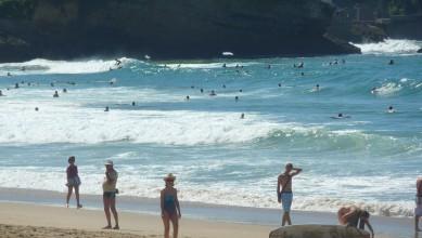 Surf report FR, Biarritz - Grande Plage (64) du 2010-09-03 15:25:00