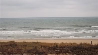 Surf report FR, Lacanau Océan - La Nord (33) du 2011-07-26 08:35:00