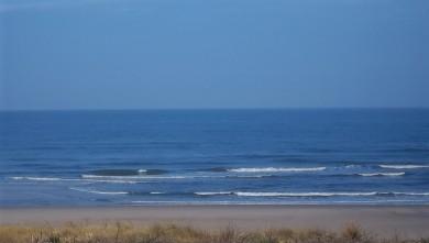 Surf report FR, Lacanau Océan - La Nord (33) du 2011-07-28 08:35:00