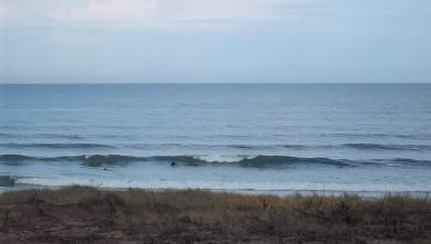 Surf report FR, Lacanau Océan - La Nord (33) du 2011-08-02 09:15:00