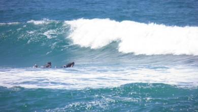 Surf report FR, Vieux Boucau (40) du 2011-08-09 14:20:00