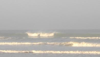 Surf report FR, Grand Village (17) du 2011-09-21 09:00:00