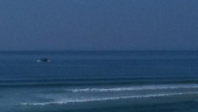 Surf report FR, Mimizan - Plage Garluche (40) du 2011-10-01 15:36:00