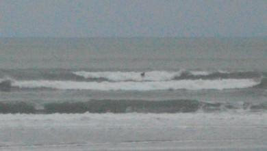 Surf report FR, Grand Village (17) du 2011-10-11 09:00:00