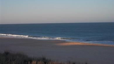 Surf report FR, Lacanau Océan - La Nord (33) du 2011-10-22 05:00:00