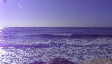 Surf report FR, Sausset les Pins - Plage du Port (13) du 2011-11-13 10:00:00