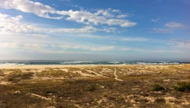 Surf report FR, La Salie (33)