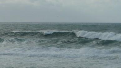 Surf report FR, Contis Plage (40) du 2011-12-12 15:30:00