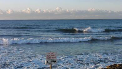 wave report FR, Sausset-les-Pins - L'Hermitage (13) du 2011-12-18 05:00:00