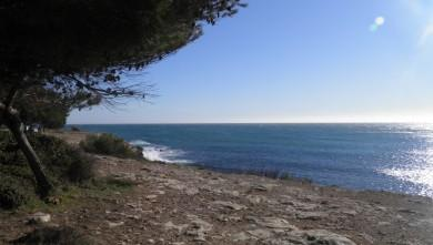 Surf report FR, La Couronne (13) du 2011-12-30 14:00:00