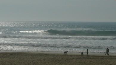 Surf report FR, Mimizan - Plage Garluche (40) du 2011-05-05 18:00:00