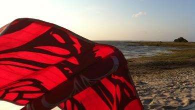 Wind report FR, Navarrosse (40) du 2011-07-13 18:00:00