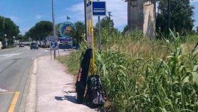 Wind report FR, Le Barcarès - Ile des Pêcheurs (66) du 2011-07-15 15:00:00