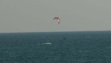 Wind report FR, Mimizan - Plage Garluche (40) du 2011-08-19 19:00:00