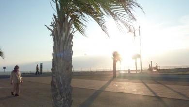 Wind report FR, La Palmyre - Bonne-Anse (17) du 2011-10-23 14:00:00