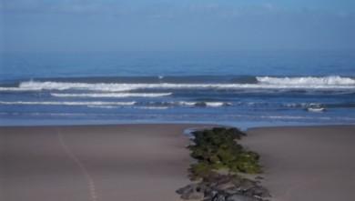 Surf report FR, Lacanau Océan - La Nord (33) du 2011-05-28 08:25:00