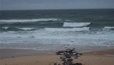 wave report FR, Lacanau Océan - La Nord (33) du 2011-06-07 09:00:00