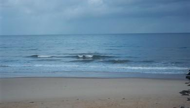 Surf report FR, Lacanau Océan - La Nord (33) du 2011-06-08 08:00:00