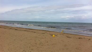 Surf report FR, Ver-sur-Mer (14) du 2011-06-19 12:00:00