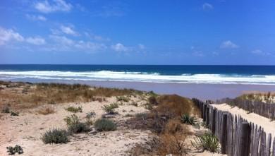 Surf report FR, Lacanau Océan - La Nord (33) du 2011-06-19 13:49:00