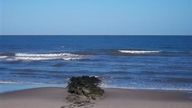 wave report FR, Lacanau Océan - La Nord (33) du 2011-06-30 08:15:00