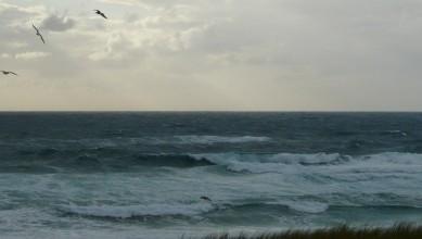 Surf report FR, Mimizan - Plage Garluche (40) du 2011-07-17 20:00:00