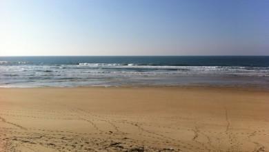Surf report FR, Mimizan - Plage Garluche (40) du 2012-02-11 15:00:00
