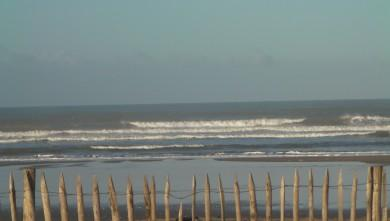 Surf report FR, Grand Village (17) du 2012-03-06 09:00:00