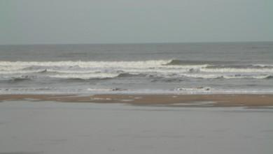 Surf report FR, Grand Village (17) du 2012-03-08 09:00:00