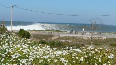 Surf report MA, La Bobine (MA) du 2012-03-09 16:00:00