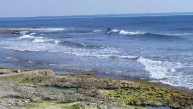 wave report FR, Sausset-les-Pins - L'Hermitage (13) du 2012-03-11 15:00:00