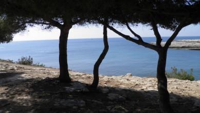 wave report FR, La Couronne (13) du 2012-04-01 12:00:00