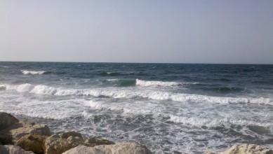 wave report FR, Sausset les Pins - Plage du Port (13) du 2012-06-30 09:30:00