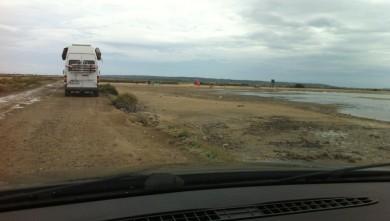 Surf report FR, Etang de La Palme (11)