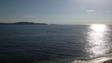 Surf report FR, L'Almanarre (83) du 2012-10-08 16:37:00