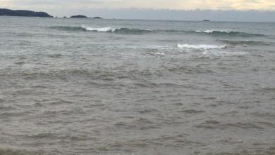 wave report FR, L'Almanarre (83) du 2012-11-29 11:44:00