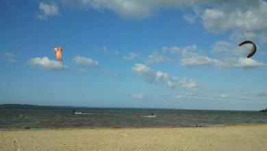Wind report FR, Navarrosse (40) du 2012-02-19 11:00:00