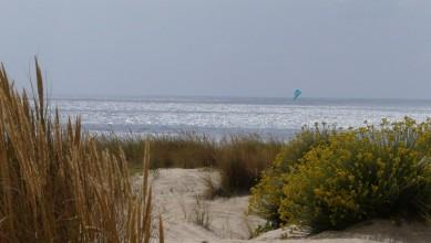 wind report FR, Le Porge (33) du 2012-07-28 17:00:00