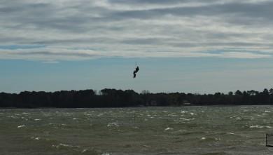 wind report FR, Les Aigrettes (40) du 2012-11-02 12:00:00