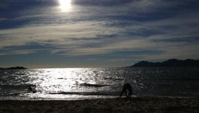 Wind report FR, Cannes - Palm Beach (06) du 2012-12-05 13:00:00