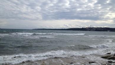 Surf report FR, Cannes - Palm Beach (06) du 2013-02-25 13:00:00