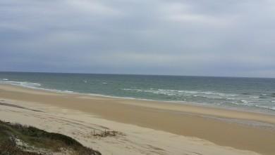 wave report FR, Biscarrosse Plage (40) du 2013-03-16 11:30:00