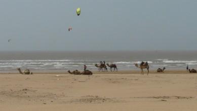 Surf report MA, Essaouira (MA) du 2013-04-20 14:00:00
