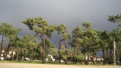 Wind report FR, Andernos - Le Betey (33) du 2013-01-22 12:00:00