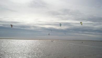 Wind report FR, La Palmyre - Bonne-Anse (17) du 2013-03-05 11:00:00