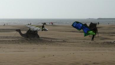 Wind report MA, Essaouira (MA) du 2013-08-02 14:00:00